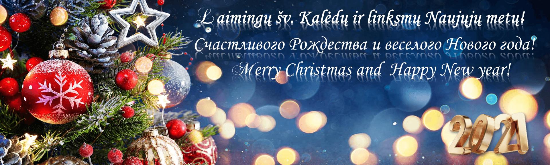 Laimingų šv. Kalėdų ir linksmų Naujųjų metų!